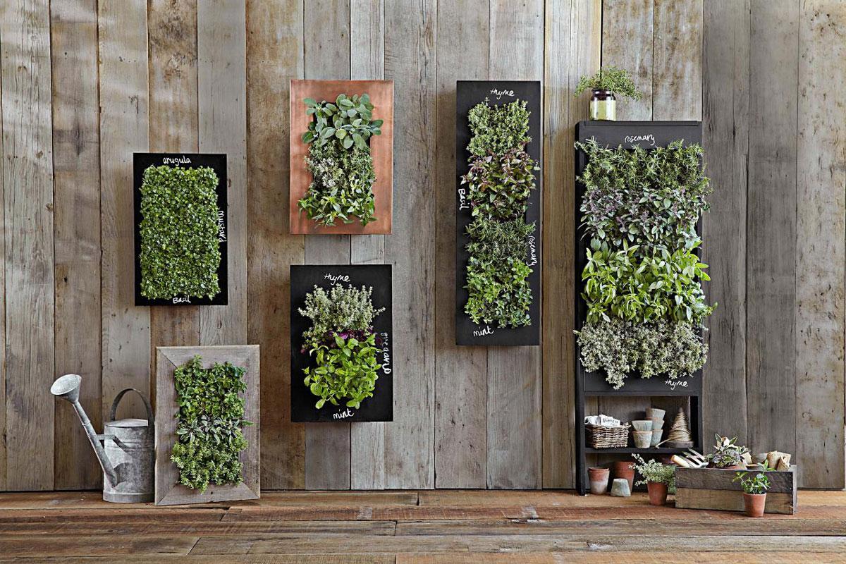 10 Benefits of Having Your Own Vertical Garden