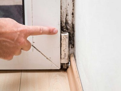 How to Tell You Need a Mold Inspection