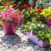 Custom Round Garden Pots