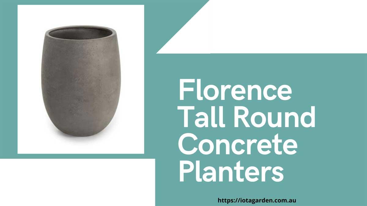 Tall-Round-Concrete-Planters