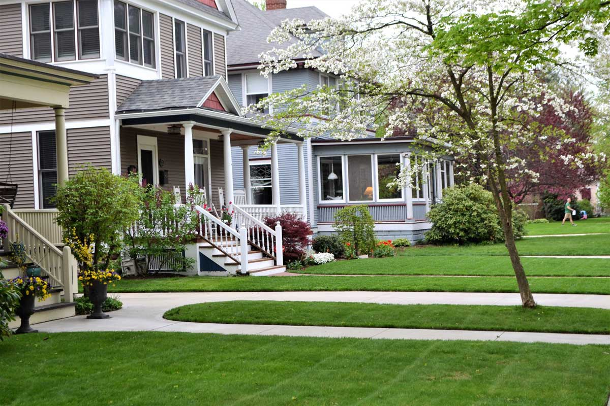 The Importance of Tree and Landscaping Maintenance