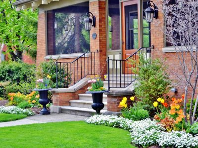 Tree and Landscaping Maintenance